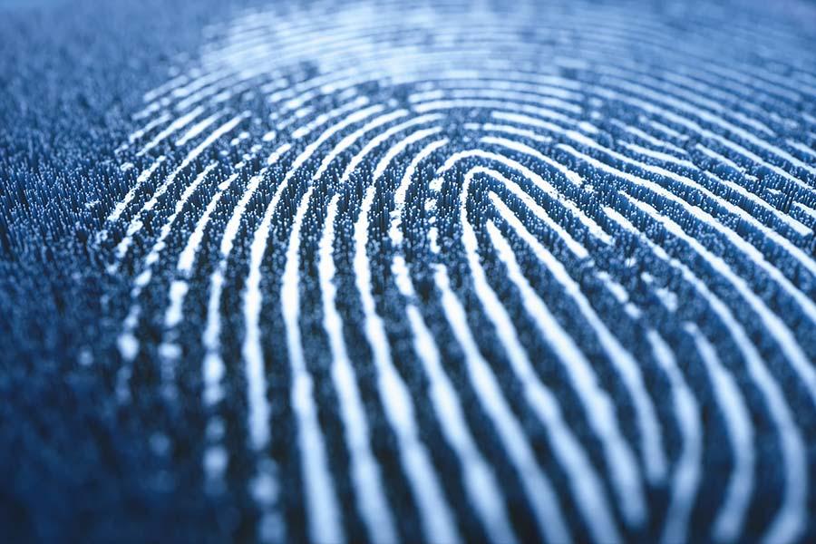 Beruflicher Fingerabdruck